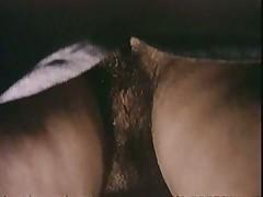 Candida Royalle. Love Secrets. 1979